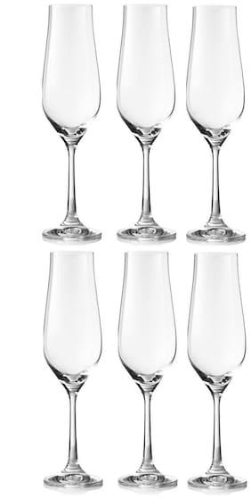 Bohemia Crystal Tulipa Champagne Flutes Glass Set, 170 Ml, Set Of 6, Transparent