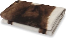 Butterthief Fleece Single Blanket ( White & Brown )