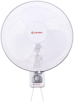 CandeS 16WFWS01 400 mm Standard Wall Fan ( White , Silver  )