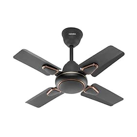 CandeS Brio Turbo 600 mm Standard Ceiling Fan ( Brown )