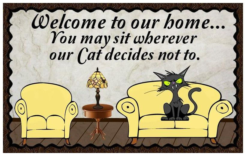 Cat is Boss  Sign, felines, cats, animals, in charge, boss, pet, house pet