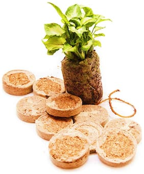 Coir Seedling Coins/Pellets/Cocopeat discs/Cocopeat Tablets, 50 mm Plant Starter Plugs with Non-woven Cloth   PACK of 15 Coir Coins