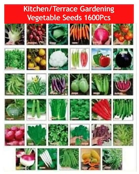 Combo (Pack Of 30+ Variety) Vegetable Seeds For Terrace And Kitchen Gardening Vegetable Seeds