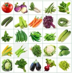 Connifer Indian Vegetable Seeds Combo for Home Garden/Terrace Garden/Kitchen garden 25 Varieties -1580+ Seeds