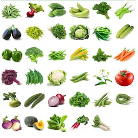 Connifer Indian Vegetable Seeds Combo for Home Garden/Terrace Garden/Kitchen garden 35 Varieties -2200+ Seeds