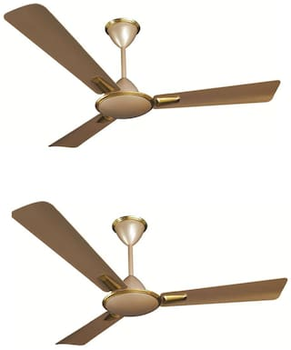 Crompton Aura Prime 1200 mm Premium Ceiling Fan ( Husky gold , Pack of 2 )