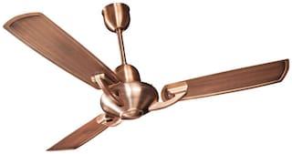 Crompton Triton 1200 mm Premium Ceiling Fan ( Antique copper , Pack of 1 )
