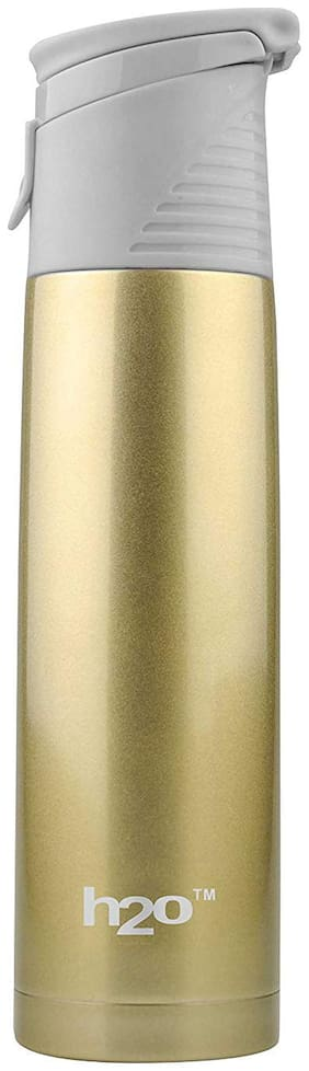 DilSe Assorted Thermosteel flask ( 500 ml , Set of 1 )