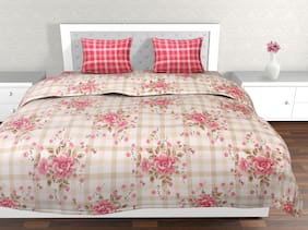 Dreamline Classic Plus Super King Size Bedsheet with 2 Pillow Cover Set of 1 (DSN-01)