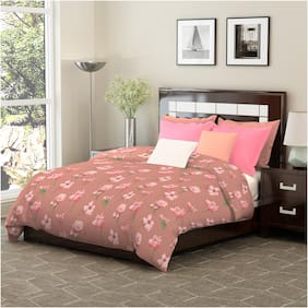 Dreamline Classic Plus Peach Floral King Double Bedsheet with 2 Pillow Cover set (DSN-8003)