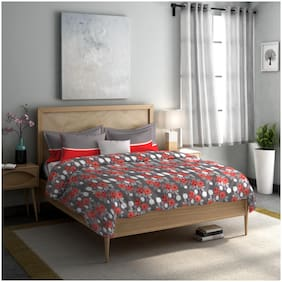 Dreamline Misty Morning Red Double Bedsheet with 2 Pillow Cover Set (DSN-05)