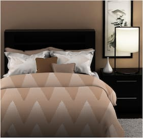 Dreamline Solid & Shape Brown 1 Double Bed sheet with 2 Pillow covers Set