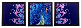 eCraftIndia Set of 3 Peocock Feather Matt Textured UV Art Painting