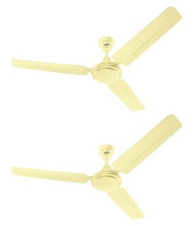 Eveready Ceiling Fan 1200mm FAB M Gold  Pack of 2