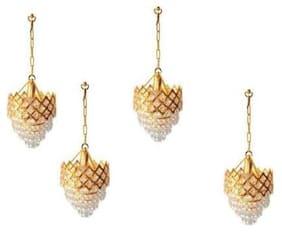 fds pendants  Chandelier Ceiling Lamp 1110