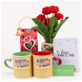 Ferns 'N' Petals Combo Of Artificial Red Carnation Flowers, Choco Swiss Heart Of Gold Chocolates, Two Coffee Mug With Heart Shape Handle, Happy Valentine Day Printed Greeting Card