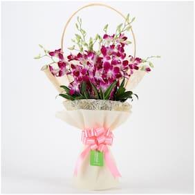 Ferns N Petals Elegant 6 Purple Orchids Bouquet|Valentines Gift