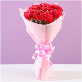Ferns N Petals Beautiful 8 Pink Carnations Bouquet Valentines Gift