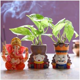 Ferns N Petals Money Plant Set & Lord Ganesha Idol|Diwali |Bhaidooj| Diwali Gift|Diwali Gift Year