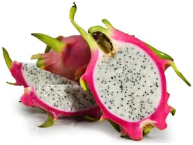 Futaba Pitaya Seeds, WHITE DRAGON Fruit Seeds - 50 pcs
