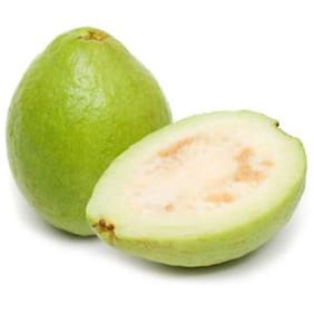 Giant Indian Guava Seeds by National Gardens