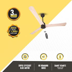 Gorilla Renesa+ with Remote Control and BLDC Motor 1200 MM Ceiling Fan - Natural White Oak Wood