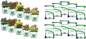 Grow Bag for Small Gardening Kit | Pack of 10 Bags & 10 Seeds| Size: 30 x 16 x 16 cm