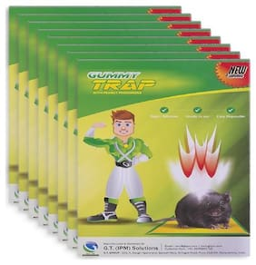 Gummy Trap,Rat trap glue pad, set of '8' (FREE Gloves with every pack,Imported Glue & Peanut Scent)