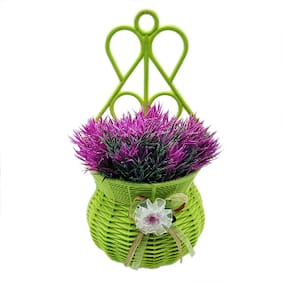 Hanging Plant With Pot by Random | Bush With Purple Leaves | With Wall Mountable Green Pot