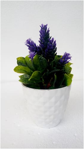 Happy Stoning Artificial Bonsai Plant  in a Pot (Height 18cm)