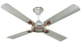 Havells Leganza 1200 MM 4 Blades Ceiling Fan (Bronze Gold)