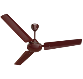 2429bca1210 Havells Mozel 1200 Mm Ceiling Fan - Brown
