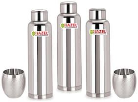 Hazel 900 ml Stainless Steel Silver Water Bottles - Set of 3