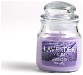 Hosley Lavender Fields Highly Fragrance 75.12 g (2.65 Oz) Wax Jar Candle