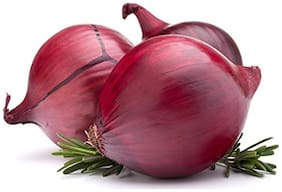 Hybrid Red Onion Seeds Vegetable Seeds Kitchen Garden Pack Vegetable Seeds by Creative Farmer