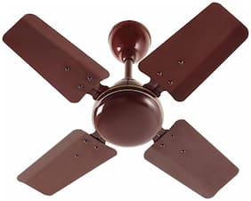 Indo Robot 1200 mm Economy Ceiling Fan ( Brown , Pack of 1 )