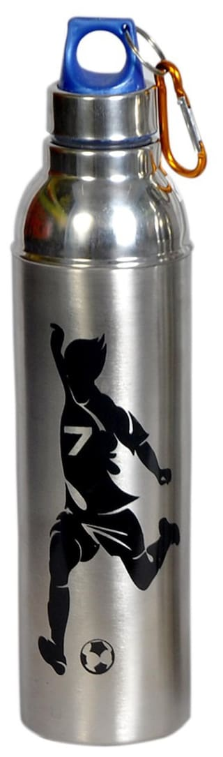 Dynamic Store 700 ml Stainless steel Assorted Water bottles - 1 pc