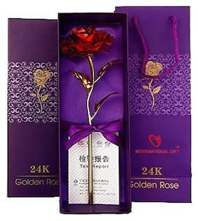 International Gift Red Rose 25 cm Gift Box and Carry Bag (25 cm, Red)