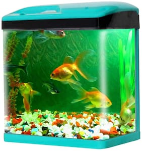 Jainsons Pet Products Fish Aquarium Combo Tank (28 Ltr)