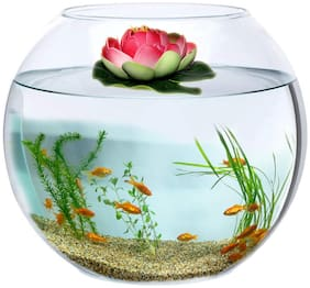 Jainsons Pet Products Round Transparent Crystal Glass Bowl Clear Sphere Vase Fish Tank Water Jar With Lotus