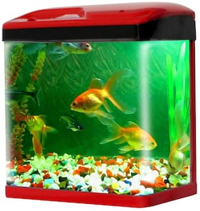 Jainsons Pet Products Fish Aquarium Combo Tank (15 Ltr)
