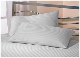 Jaipur Linen Set 2 Premium Microfiber Pillow with 2 pillow cover Standard Size , White 17 Inch x 27 Inch