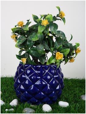 Just Originals Pineapple Bowl Shape Ceramic Flower Pot