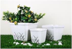 Just Originals Casket Shape Set of 3 Ceramic Flower Pot with Print