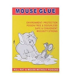 kudos Mouse Glue Pad - Kill Mouse without Poisons ( Pad Colour / Design May Very )