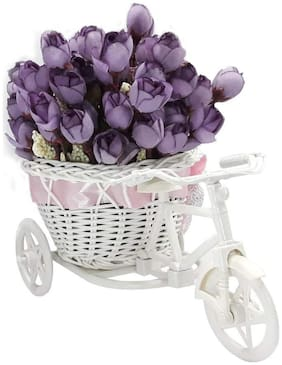 LOF Exculsive Best Gift/ Surprise For Sister On This Rakhi;Raksha Bandhan With Artificial Cycle & Flower Bunch