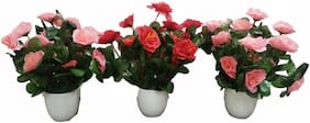 Loxiaa 8823 Multicolor Rose Artificial Flower with Pot  (7.4 inch, Pack of 3)
