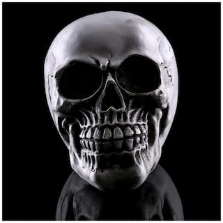 Magideal Homosapiens Skull Statue Figurine Human Skeleton Head Medical  Skeleton 2