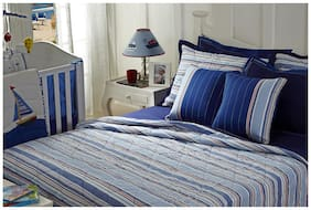 Maspar Little Sailor Blue Double Quilt (1 Pc)