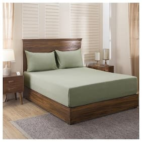 maspar Cotsmere 300 TC Green Egyptian cotton King Size Bedsheet with 2 pillow covers ( Pack of 3 )